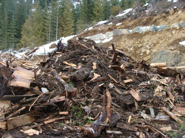Wood Waste in Compost Production